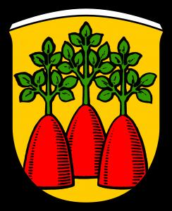 Wappen Heinzenberg UE -png